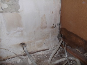 Kitchen Mold Pic 2