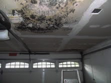 Leak causing mold on ceiling in garage_edited