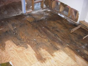 Categories Of Water Damage